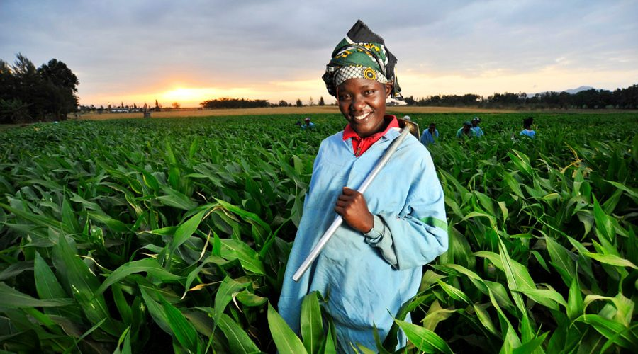 emm-agriculture.jpg